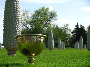 The Presidents Cup with Field of Corn in Dublin, Ohio